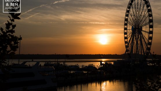 sunset-room-national-harbor-wedding-008