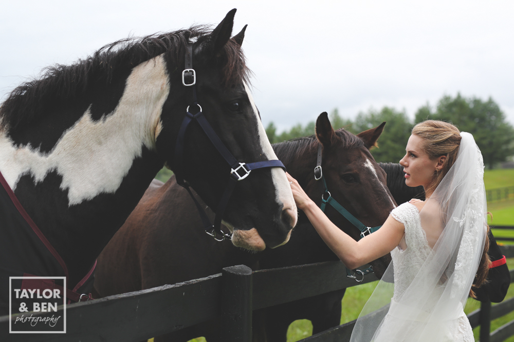Black Horse Inn Wedding